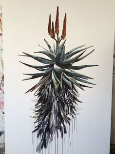 South African painter Kurt Pio brings a piece of Cape Town to Antwerp Botanical Drawings, Botanical Illustration, Illustration Art, Plant Drawing, Painting & Drawing, Art Sketches, Art Drawings, Aloe Oil, List Of Paintings