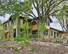 Natural Stone and Wood Exterior Arranged Artistically and Uniquely: Natural Landscape Modern Exterior Design Big And Leafy Tree
