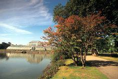 Royal Botanic Gardens, Kew, Richmond, Surrey