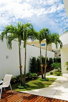 45 small garden design ideas this years 18 ~ Design And Decoration Palm Trees Landscaping, Florida Landscaping, Tropical Landscaping, Modern Landscaping, Front Yard Landscaping, Tropical Garden, Landscaping Ideas, Small Garden Design, Curb Appeal