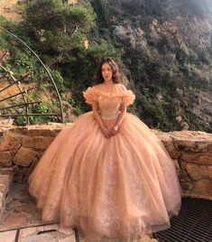 Pink Princess, Princess Dresses, Hoop Skirt, Pink Gowns, Casual Attire, Wedding Bride, Ball Gowns, Long Hair Styles, Female