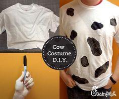 Cow Appreciation Day - July 14, 2015