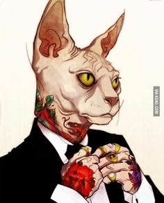 Meowfia cat