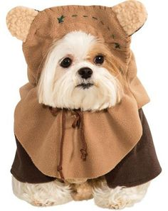 Transform your dog into a cuddly creature from a galaxy far, far away with our Ewok Dog Costume. This Star Wars dog costume includes a jacket and Ewok dog headpiece. Star Wars Halloween, Ewok Halloween, Chien Halloween, Pet Halloween Costumes, Cat Costumes, Costume Ideas, Spirit Halloween, Halloween 2016, Rudolph Costume