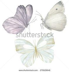 Stock Images similar to ID 278681129 - watercolor blue butterfly on...