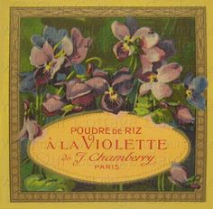 Vintage Perfume Labels   Antq FRENCH Perfume Labels * LOV Violets +   Our Cottage Garden