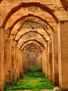 Horse Stables Meknes, Morocco