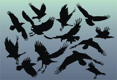 raven stencils | Animal Stencils : Raven Invasion