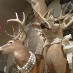 Bedroom decor idea. Shot my 1st 9 pt in October & he & 2 others will be over my dark sleigh bed using this Juicy Couture store decor as inspiration!