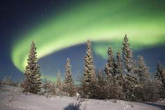 Winter aurora picture for desktop and wallpaper