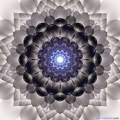 http://www.mandallaartevisual.com/2013/03/flores-cosmicas-continuacao.html