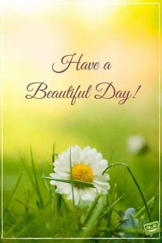 Good Day Quotes: A New Day Starts! - Quotes Sayings Good Morning Picture, Good Morning Good Night, Morning Pictures, Good Morning Images, Morning Pics, Good Day Images, Morning Texts, Morning Greetings Quotes, Good Morning Messages