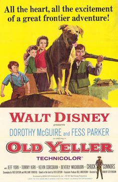"""CAST: Dorothy McGuire, Fess Parker, Tommy Kirk, Kevin Corcoran, Jeff York, Beverly Washburn, Chuck Connors; DIRECTED BY: Robert Stevenson; PRODUCER: Walt Disney Studios; Features: - 11"""" x 17"""" - Packag"""
