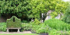 Barnsley House, shape, ligustrum over bench