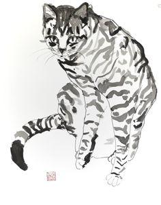 "Saatchi Art Artist Agnes Bodor; Painting, ""Tabby"" #art"