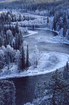 Scenery: Outstanding Collection of Marvelous Photos for the Human Eyes - Oulanka National Park, Finland Beautiful World, Beautiful Places, Winter Szenen, Winter Road, Winter Travel, Winter Time, Snow Scenes, All Nature, National Parks