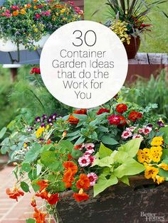 30 Container Garden Ideas That Do the Work for You