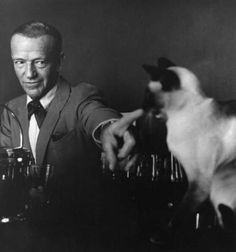 Fred Astaire and his elegant Siamese cat Carlyle.    http://freddie-adele.tumblr.com/post/35433682475/secretcinema1-fred-astaire-his-siamese-cat