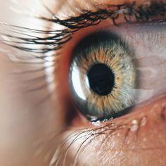 Jenna Echakowitz   Eye Closeup