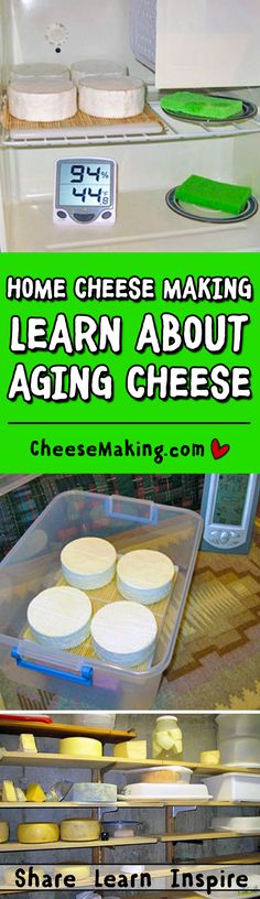 Aging Cheese FAQ | How to Make Cheese | Cheesemaking.com