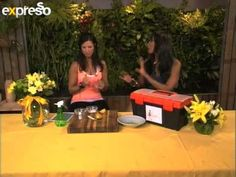 Eco Diva- Essential Tool Kit on a Budget (28.2.2013) - YouTube