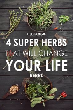 These super herbs might change your life. Learn what adaptogens are and how they can help you! Brought to you by REBBL.