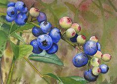 "Daily Paintworks - ""Backyard Blues"" - Original Fine Art for Sale - © Jeff Atnip Arches Watercolor Paper, Watercolor Flowers, Watercolor Paintings, Acrylic Paintings, Selling Paintings, Fruit Painting, Kitchen Art, Fine Art Gallery, Art For Sale"