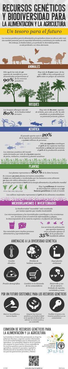 Biodiversidad para la seguridad alimentaria y la nutrición: 30 años de la Comisión de Recursos Genéticos para la Alimentación y la Agricultura. La biodiversidad para la alimentación y la agricultura constituye uno de los recursos más importantes de la Tierra.