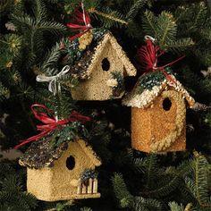 Deze+vogelhuisjes+zijn+beplakt+met+vogelzaad,+zo+hebben+de+vogels+er+dubbel+plezier+van!