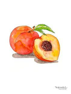 Peach Illustration in Watercolor Watercolor Fruit, Fruit Painting, Pen And Watercolor, Watercolor Paintings, Simple Watercolor, Paintings Of Fruit, Watercolors, Watercolor Portraits, Abstract Watercolor