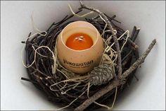 L'homme préhistorique a consommé des œufs de cane, d'oie, de pintade comme le révèlent les débris de coquille sur les sites archéologiques. Durant l'Antiquité, la consommation d'œufs est courante c...