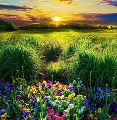 """Em Deus há sempre um lugar para novos começos. Nunca é tarde demais para começar de novo! Quando o sol se levanta a cada manhã, ele está declarando: """"É um novo dia, vamos começar de novo"""" - Joyce Meyer"""