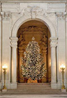 Holidays. Christmas Tree in Paris. Photographer: Melissa Mercier.