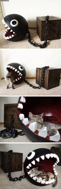 Funny pictures about Chomp The Cat Bed. Oh, and cool pics about Chomp The Cat Bed. Also, Chomp The Cat Bed photos. Animals And Pets, Funny Animals, Cute Animals, Crazy Cat Lady, Crazy Cats, Deco Gamer, Cat Furniture, Funny Furniture, Cats And Kittens