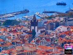 Magical Madeira island...