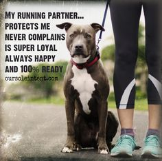 Each and every walk or run I go for... they are with me... LOVE MY DOGS!