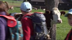 School's Out: Lessons from a Forest Kindergarten on Vimeo