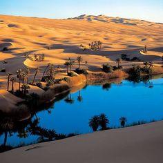 Magnifique oasis Ghardaia