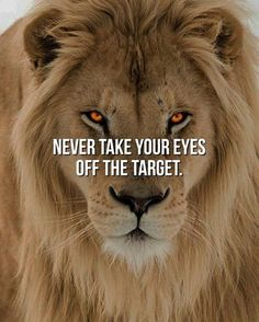 247 Motivational Inspirational Quotes 220 Motivational Quotes For Men, Men Quotes, Wisdom Quotes, True Quotes, Positive Quotes, Inspirational Quotes, Encouragement Quotes, Gym Qoutes, Pisces Quotes