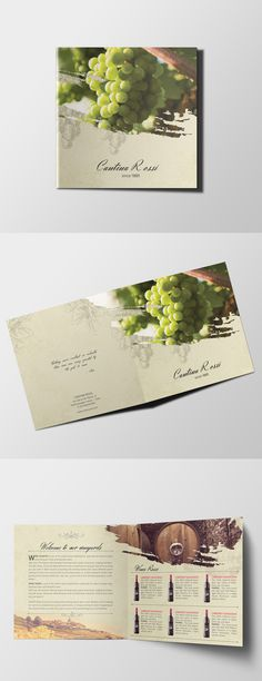 Brochure personalizzabile per presentazione cantina o tenuta di vini in stile rustico. http://www.bitlabels.com/it/brochure-pieghevole-cantina-vino