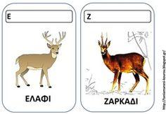 ΖΩ2 Pet Day, Animal Crafts, Literacy, Moose Art, Animals, Animales, Animaux, Animal Memes, Animal