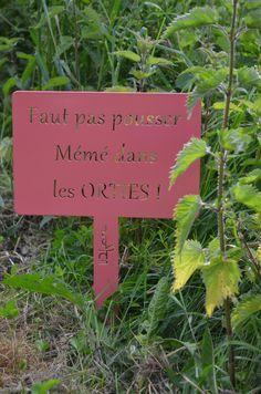 Color Rosa, Pink Color, Jardin Des Tuileries, Garden Labels, Garden Whimsy, Image Categories, Spring Sign, Garden Spaces, Shrubs