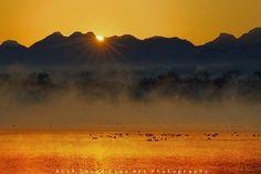 Uchhali Lake, Soon Sakaser, Salt Range, Pakistan.