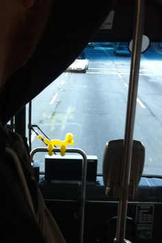 Don't get me on technicality, but we have more balloon animals on Muni this way...