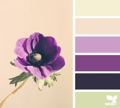 { flora hues } image via: @heather_page