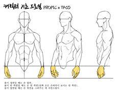 Human Body Drawing, Human Anatomy Drawing, Anatomy Art, Hand Drawing Reference, Drawing Reference Poses, Drawing Skills, Anatomy Sketches, Drawing Sketches, Drawings