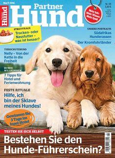 Bestehen Sie den Hunde-Führerschein? Gefunden in: Partner Hund - epaper, Nr. 5/2016