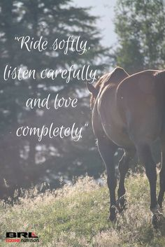 """""""Ride softly, listen carefully, and love completely"""" equestrian horse quote equestrian life Equine Quotes, Equestrian Quotes, Equestrian Problems, Pretty Horses, Beautiful Horses, Inspirational Horse Quotes, Horse Riding Quotes, Country Girl Quotes, Southern Quotes"""