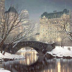 #christmas #christmaslights #new york #snow #centralpark #christmasinnewyork