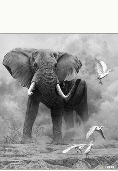 DIY Full Drill Diamond Painting Elephant Cross Stitch Embroidery Craft - Kunstbilder von Tieren und Pflanzen - The Dallas Media Image Elephant, Photo Elephant, Elephant Love, Elephant Art, African Elephant, Wildlife Paintings, Wildlife Art, Animal Paintings, Animal Drawings